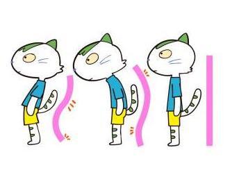 猫背 お腹が出る